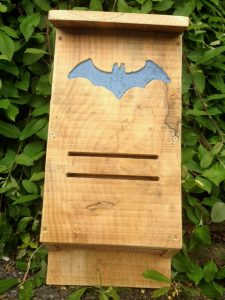 Newly constructed bat box ready for installation in Cloneen